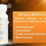 Hyaluron Complex